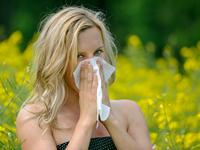 Allergien treten vor allem im Frühjahr aus