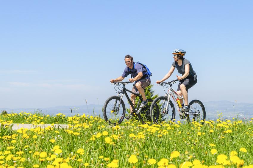 Zwei Mountainbiker unterwegs durch Wiesen