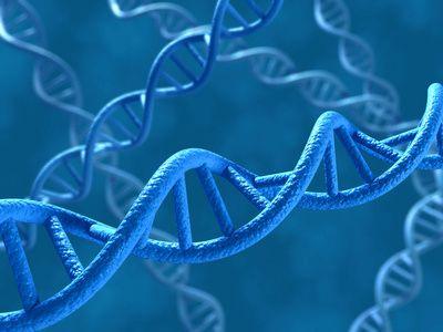 Blauer DNA-Strang vor blauem Hintergrund
