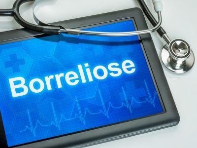 Tablet mit der Diagnose Borreliose auf dem Display, ein Stethoskop liegt auf dem Tisch