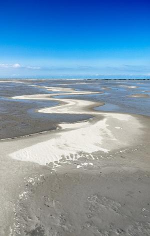 Dünenlandschaft auf der Nordseeinsel Borkum