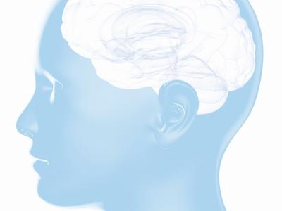 Das Ruhenetzwerk im Gehirn wird in Phasen des Nichtstuns aktiv
