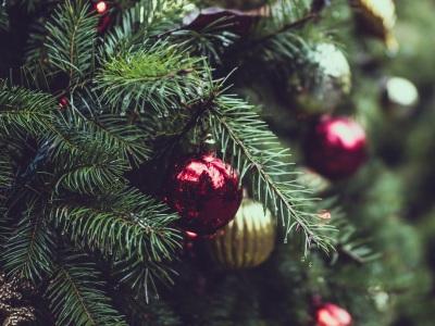 Tipps für Wahl des perfekten Weihnachtsbaum